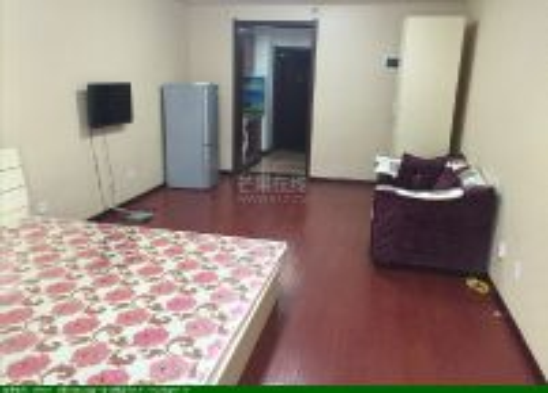 和泓国际公寓 精装修小户型 家电家具齐全 拎包即住低价急租!